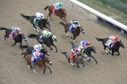 UPI Horse Racing Preview: Kentucky Derby preps and Dubai World Cup prelims