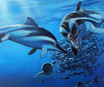 Forgotten fossil reveals new species of ancient marine reptile