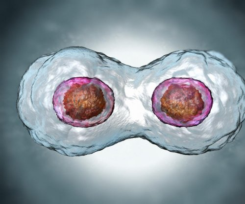 Discovery may improve embryo selection for in vitro fertilization
