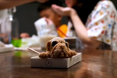 Cafe serving up ice cream in realistic puppy shapes