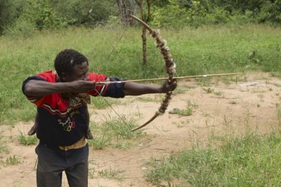 Tanzanian bow-and-arrow hunters offer insight on evolution of technology