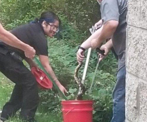 Maryland authorities capture python near playground