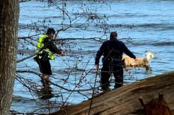 Maine kayaker rescues escaped goat that swam into the ocean