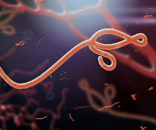 Ebola persists in semen for up to nine months