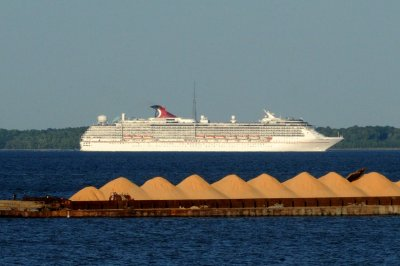 House panel to probe COVID-19 outbreaks on Carnival cruise ships