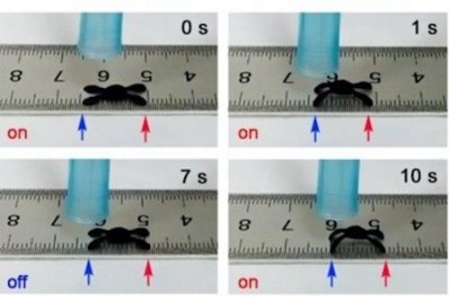 New graphene robot moves in response to changes in humidity