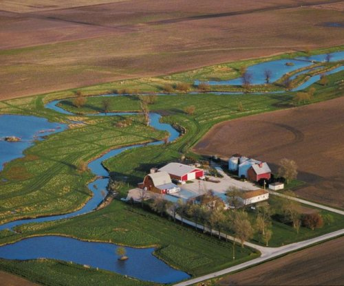 Study: Wetlands help reduce nitrates