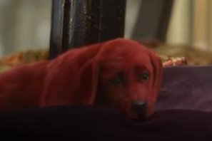 'Clifford the Big Red Dog' release postponed because of COVID-19 concerns