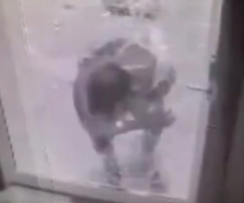 Bar burglar deftly crawls through hole in unlocked glass door