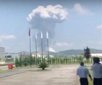 Turkish fireworks factory explosion: At least 4 dead, dozens injured