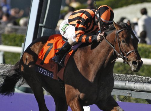 Little Mike upsets Breeders' Cup Turf