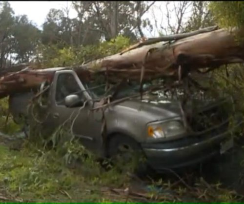 California man's two vehicles crushed by different trees in different cities on same day