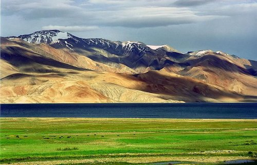 Barley key to ancient settlement of Tibetan Plateau