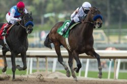Three Kentucky Derby preps share weekend racing spotlight