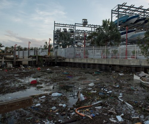 Florida's economic hit from Hurricane Irma expected to total billions