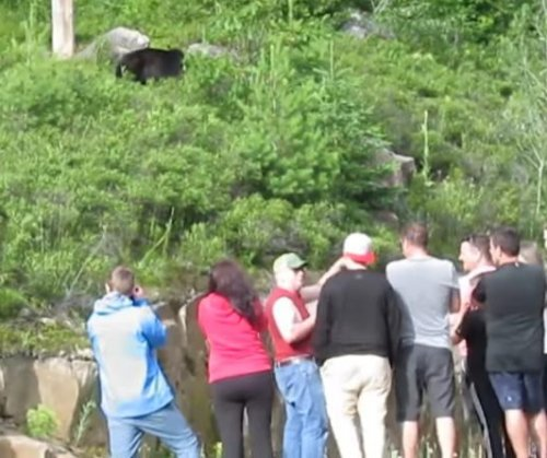Man captures video of park visitors' dangerous bear behavior