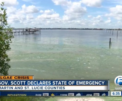 Florida declares state of emergency over algae blooms