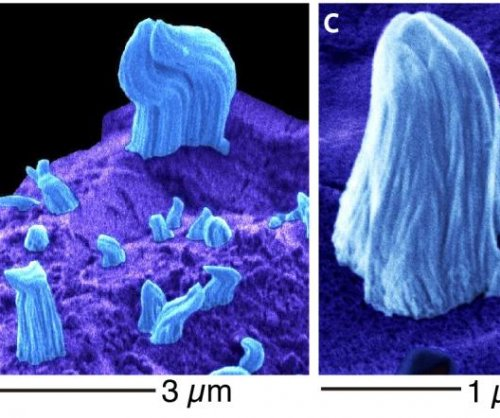 Iron 'whiskers' found covering Itokawa asteroid samples