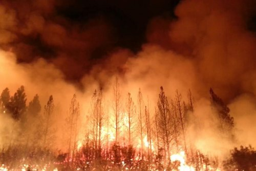 Hunter charged with starting huge Rim Fire in Yosemite