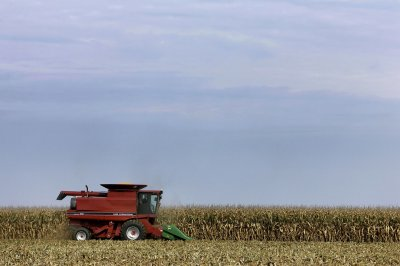 Nitrogen From Fertilizers Poses Long-Term Threat to Drinking Water