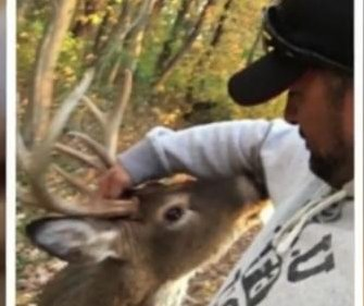 New York man wrestles deer when selfie session turns dangerous
