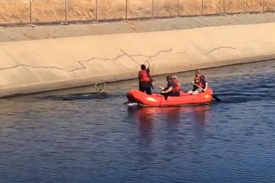 Watch:-Firefighter-uses-lasso-to-rescue-deer-from-canal