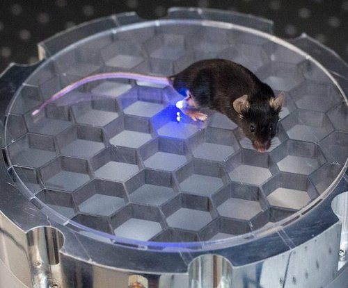 Wireless, implantable device stimulates nerves in mice