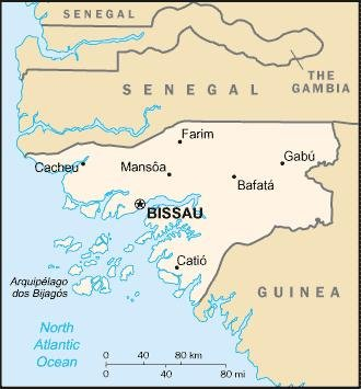 Guinea-Bissau to hold first elections since 2012 coup