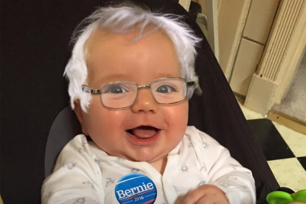 Look Babiesforbernie Dress As Sanders Upi Com