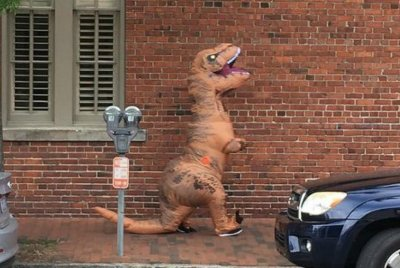 Police: Carriage driver injured when 'dinosaur' spooked horses