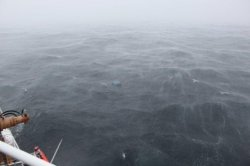 Search underway for 4 fishermen after boat sinks in Atlantic