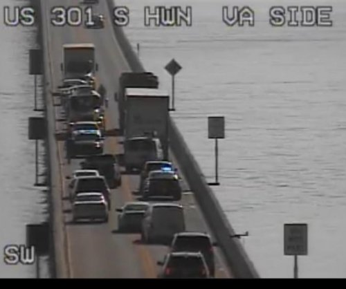 Loose pig halts traffic on Maryland bridge