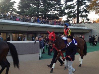 Ryan Moore savors Japan Cup win, looks to future glory