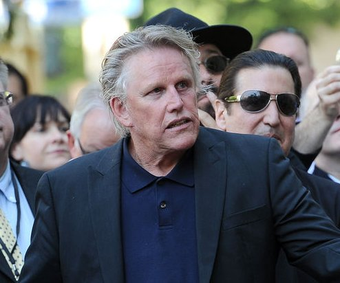 Gary Busey strikes pedestrian with his car