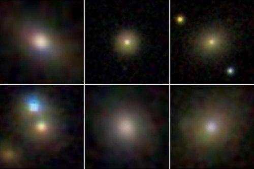 Winds from supermassive black holes can stunt dwarf galaxy growth