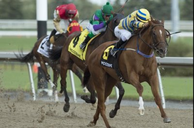 Heavy favorites spice up weekend racing card