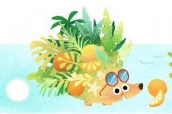 Google celebrates the arrival of summer, winter with new Doodles