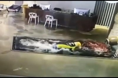 Unlucky delivery driver walks straight into fish pond