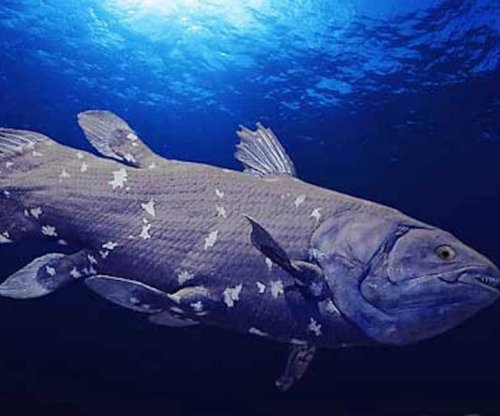 African coelacanth fish evolved dozens of new genes just 10M years ago