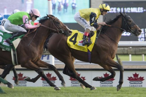 Desert Encounter repeats in Canadian International in weekend horse racing