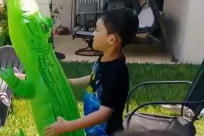 Watch: Real Alligator Shows Up While Boy Plays With Toy   UPI.com