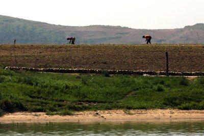 Report: U.N. food aid to North Korea stalling under restrictions