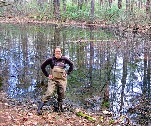 Small ponds give off surprising amount of CO2 and CH4