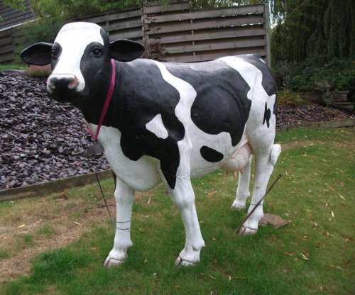 'Local landmark' cow statue being sought after theft