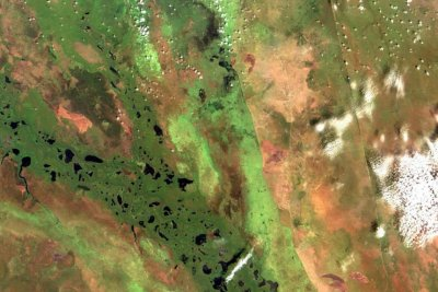 Africa's tropics account for a third of rise in methane emissions