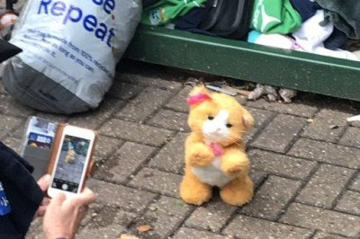'Cat' trapped in donation bin turns out to be battery-operated toy