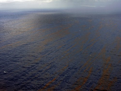 Oil still present in Gulf of Mexico