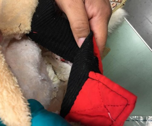 Customs agents find cocaine sewn into children's coats