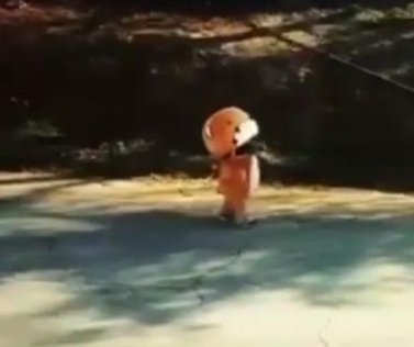 Man in teddy bear costume walking from Los Angeles to San Francisco