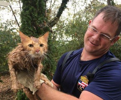 Nashville Fire Dept. rescues cat named Thomas Jefferson from drainpipe